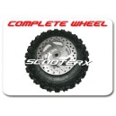 Complete Front Wheel w/disc and bearing